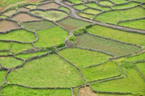 Felder auf einer Landzunge, Flores, Azoren, Portugal