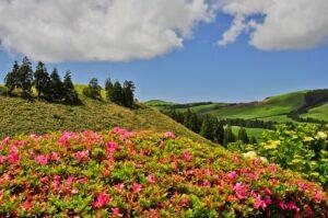 Liebliches Furnas-Tal, Sao Miguel, Azoren, Portugal
