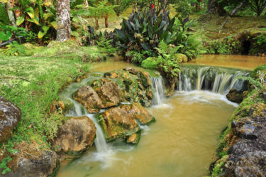 Kaskaden inmitten tropischer Vegatation nahe Furnas, Sao Miguel, Azoren, Portugal