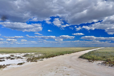 Typisch Afrika: tiefe Wolken über Sandpad, Etosha-Pfanne, Namibia