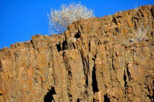 Orgelpfeifen aus Basalt, Khorixas, Damaraland, Namibia