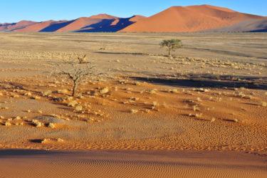 Sandstrukturen und Dünen, Sossusvlei, Namibia