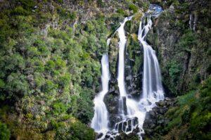 Waipunga Falls nahe Lake Taupo, Waikato Region, Nordinsel, Neuseeland