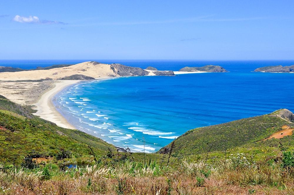 Neuseeland Detail: Strand Von Cape Maria Van Diemen Mit