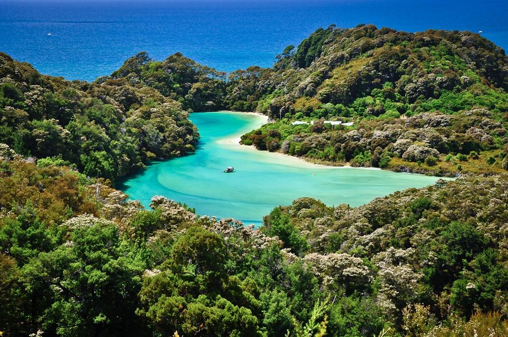 Neuseeland Detail: Frenchman Bay Lagoon, Abel Tasman Track