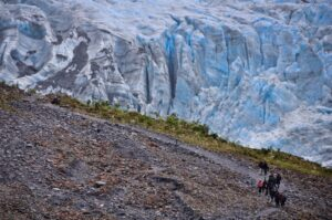 Gletscherexpedition am Fox Glacier, Südinsel, Neuseeland