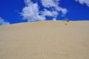 Sandboarding auf den Te Paki Sandünen, Northland, Nordinsel, Neuseeland