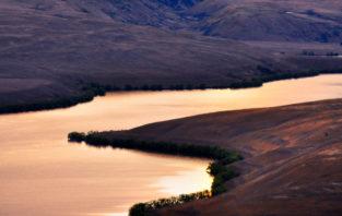 Lake Alexandrina, Mackenzie-Distrikt, Canterbury, Neuseeland