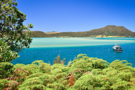 Strand in der Bay of Islands, Northland, Nordinsel, Neuseeland
