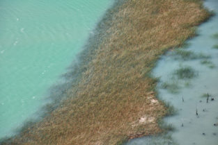 Insel im Río Ibáñez, Patagonien, Chile