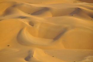 Sanddünen in der Kalahari-Wüste, Namibia