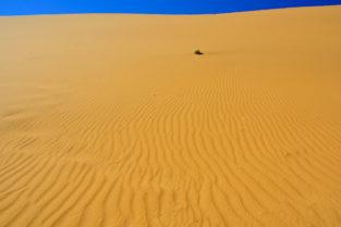Sanddünen, Namib-Naukluft-Nationalpark, Namibia