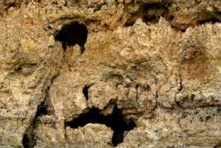 Gesichter aus Fels, Algarve, Portugal