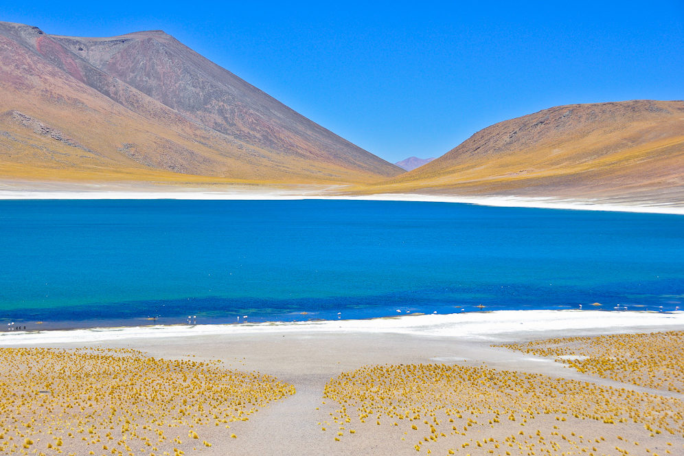 Laguna Miñiques (4.120 m), Los Flamencos Nationalpark, Región Antofagasta, Chile