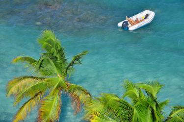 Palmen und türkises Meer, Tobago Cays, St. Vincent & Grenadinen, Karibik