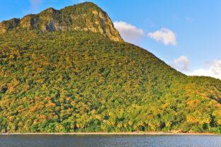 Tropische Palmenidylle am Strand von Anse l'Ivrogne, St. Lucia, Karibik