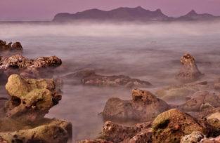 Korallenpool am Strand von Sandy Island, Grenada