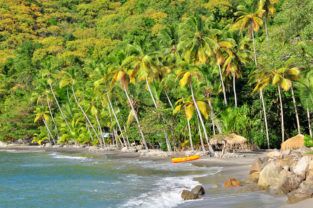 Tropischer Palmenstrand Anse Mamin nahe Anse Chastanet, Saint Lucia, Karibik