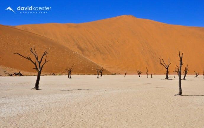 Namibia Wallpaper 1 | 1920x1200 | Dead Vlei, Namib-Naukluft, Wüste, Bäume, Hintergrundbild, Desktopbild, Bildschirmhintergrund