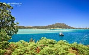 Neuseeland Wallpaper 3 | Bay of Islands Insel Strand Meer | 1920×1200 | Hintergrundbild, Desktopbild, Bildschirmhintergrund