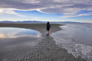 Wandern in Wattlandschaft bei Nelson, Südinsel, Neuseeland
