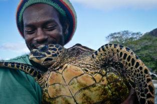 Seychellen 21 | Naturschützer mit Karettschildkroete, Seychellen