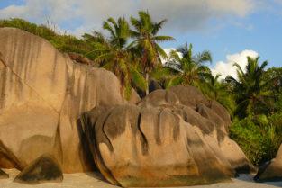 Granitfelsen und Palmen am Strand, La Digue, Seychellen
