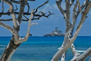 Anse Patates, La Digue, Seychellen