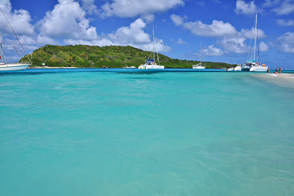 Strand auf der Insel Petit Rameau, Tobago Cays, Grenadinen, Karibik