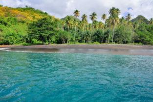 Vulkanisch dunkler Palmenstrand, St. Vincent & Grenadinen, Karibik