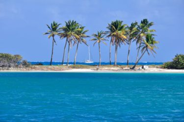 Palmenstrand an der Saltwhistle Bay, Tobago Cays, Grenadinen