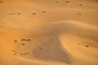 Sanddünen in der Kalahari, Namibia