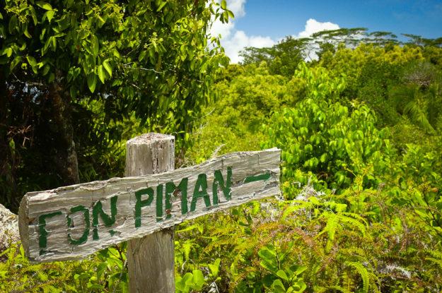 Seychellen: Urwald auf Praslin