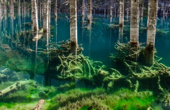 Kaindy See: bizarres Schauspiel auch unter dem Wasser, wo die versunkenen Fichten wie alte Schiffswracks anmuten