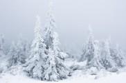 Auf dem Brocken im Winter, Nationalpark Harz, Sachsen-Anhalt