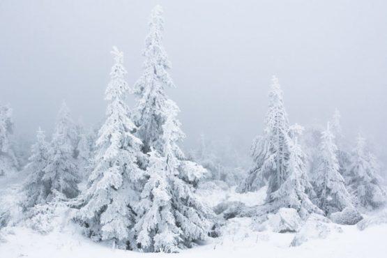 Deutschland - Brocken im Winter, Nationalpark Harz