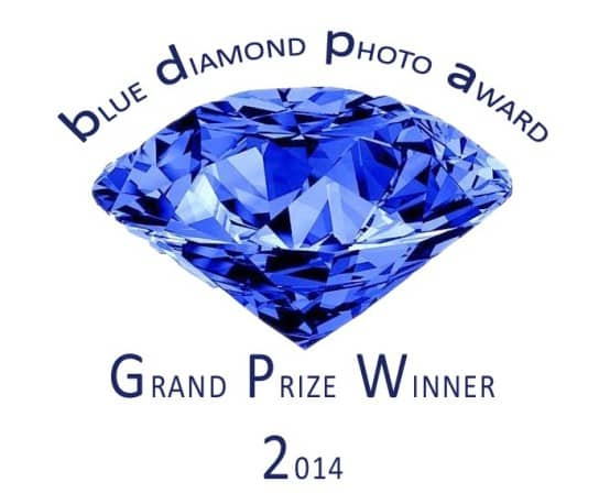 Winner Button Grand Prize 2014