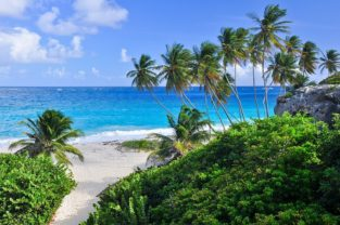 Palmenstrand der Bottom Bay, Barbados, Karibik