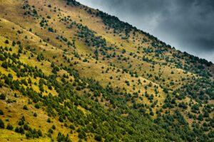 Ala Archa Nationalpark, Tien Shan, Kirgistan
