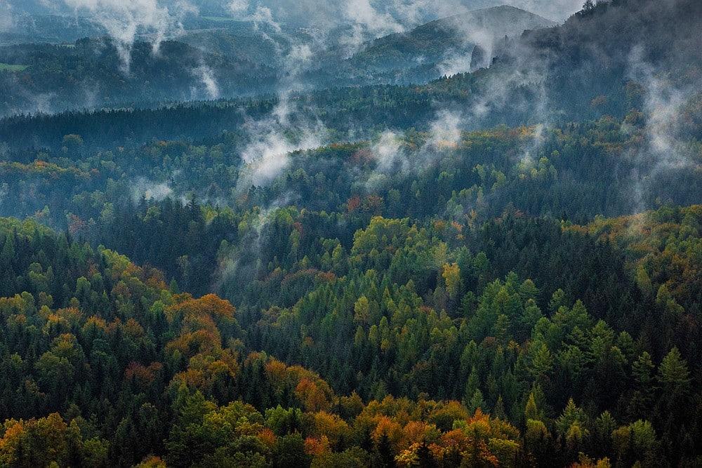 Herbst im Gebiet der Schrammsteine, Elbsandsteingebirge, Sächsische Schweiz, Sachsen