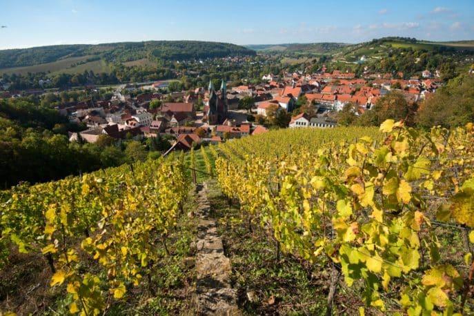 freyburg-unstrut-weinberge-landschaft-4