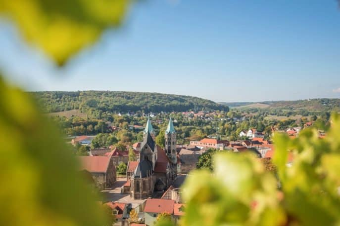 freyburg-unstrut-weinberge-landschaft