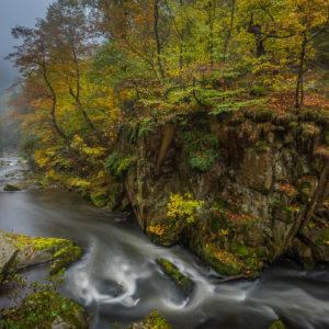 Deutschland #5 - Bodetal im Herbst