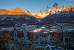 Patagonien: Baumstämme, kleine Seen und Fitz Roy im Sonnenuntergang, Los Glaciares, Argentinien