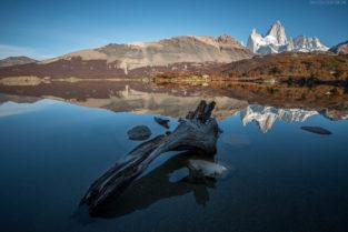 Patagonien, Baumstamm und Spiegelung im Mondlicht, Laguna Capri, Los Glaciares, Argentinien