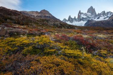 Patagonien: Herbst am Fitz Roy, Los Glaciares, Argentinien
