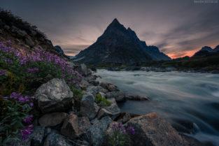 Grönland Landschaft: Fluss und Blumen im Gebiet der Tasermuit Fjords, Südgrönland