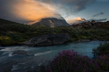 Grönland Landschaft: Fluss und Blumen, Tasermiut Fjord, Südgrönland