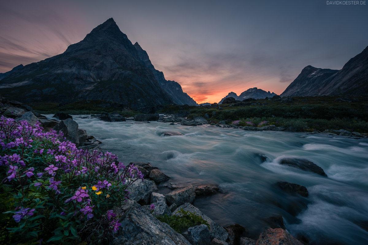 Grönland Landschaft: Fluss und Blumen im Tasermiut Fjord, Südgrönland