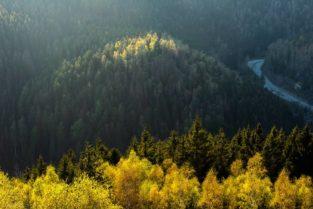 Blick von Feigenbaumkanzel, Okertal, Harz, Niedersachsen